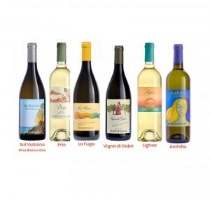 Donnafugata Bianchi Pack confezione 6 bottiglie